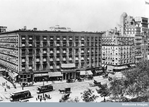M0008502 Fifth Avenue Hotel, New York